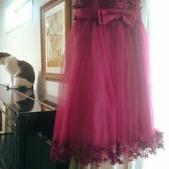 赤い/お花のドレス/ドレス/発表会/ピアノ 写真は、娘がお気に入りだった赤いドレス。…