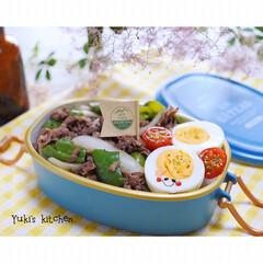 サブヒロモリ ブランシュクレ オーバルタイトランチボックス 1段 500mL ホワイト お弁当箱(弁当箱)を使ったクチコミ「・ 今日のおべん𐂐.·˖* ・ 一応…牛…」
