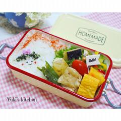 お弁当箱 1段 麺 丼 ミコノス タイトランチ1段 | mykonos(弁当箱)を使ったクチコミ「・ 今日のおべん𐂐.·˖* ・ ヘルシー…」