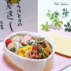 lunchbox/lunch/わっぱ/曲げわっぱ/ランチボックス/お弁当箱/... ・ 今日のおべん𐂐.·˖* ・ 青高菜と…