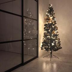 クリスマス/ダイニングルーム/クリスマスツリー/クリスマスディスプレイ/室内窓/180センチ/... ブラックツリー点灯