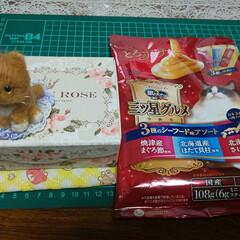 リミ友さんからの贈り物 トラによく似た可愛い羊毛フェルト😍 どー…(1枚目)