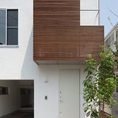 狭小住宅/狭小地/デザイン/建築/建築家/設計事務所/... SDY(1枚目)