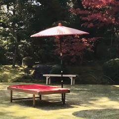 もみじ狩り/京都/寺社/旅 京都の和な風景