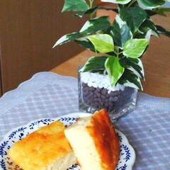 食欲の秋 ホットケーキミックスとヨーグルトでチーズ…