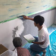 おうち お家の壁を珪藻土に塗り替え😊 息子も手伝…(1枚目)