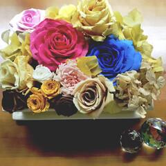 コラボ/樹脂粘土の薔薇/ドライフラワー/ブリザードフラワー/雑貨/ハンドメイド ブリザードフラワーとドライフラワー 樹脂…