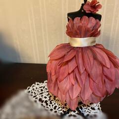 ドレス/トルソー/ダイソー/雑貨 午前中にリースを作りある花の中で唯一 明…