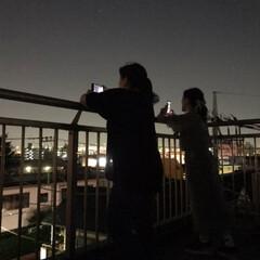 両親/花火/令和の一枚/風景 昨夜 花火を観に行きました 実家の屋上で…