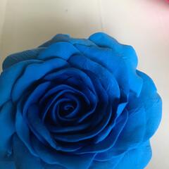 薔薇/樹脂粘土/ハンドメイド/100均/ダイソー 久しぶりに粘土遊び 何にしょうかな?