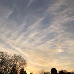 空/夕陽/風景 Xmasの夕陽