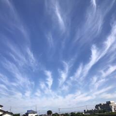 雲/空/癒し/風景/暮らし 今日のそら