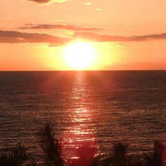 太陽/パワー/旅行/LIMIAおでかけ部 パワーを欲しくて日の出を見に海へ! がん…