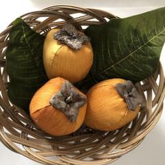 インテリア小物/秋/ハンドメイド 柿の美味しい季節になりました!