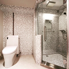 マンション/ガラスモザイクタイル/シャワーブース/リフォーム/リノベーション/インテリア/... 昔、マンションを浴槽無しにしました。