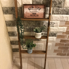 ラダー/フォロー大歓迎/冬/おうち/DIY/雑貨/...
