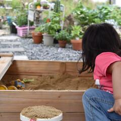 庭づくり/フォロー大歓迎/LIMIAファンクラブ/LIMIA手作りし隊/ハンドメイド/DIY/...  こんにちは😃  夕方1時間程娘は おパ…