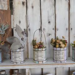 寄せ植え/家庭菜園初心者/サボテン/庭づくり/ガーデニング/ドライフラワーのある暮らし/... 木材缶にドライフラワー  空き缶に木材を…