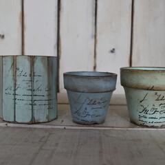 シンプル/DIY/リメ缶/リメイク/寄せ植え/多肉植物のある暮らし/...  オーダーでお作りした鉢と木材缶  パッ…