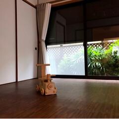 ニトリ/ロールスクリーン/庭 隣家の視線は遮りたい。。。けど、庭の緑は…