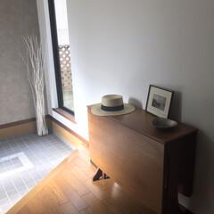 飾り/コンソール/玄関/北欧家具/Gplan/ミッドセンチュリー/... 玄関、朝日のこの感じが好きやなぁー