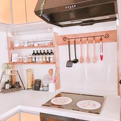 調味料ラック/DIY/100均/キッチン 収納スペースが少なく調味料を入れて置く場…