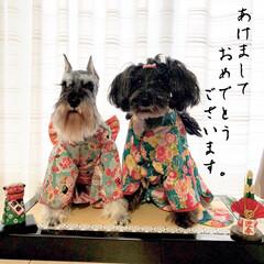 叶瑠/COAL/コルカナ/寝正月/可愛い/晴れ着でおめかし/... 明けましておめでとうございます🎍 本年も…