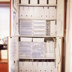 JEJ ファイルボックススリム ホワイト(マガジンラック)を使ったクチコミ「リビング棚、こちらは全面ほぼ書類収納にし…」