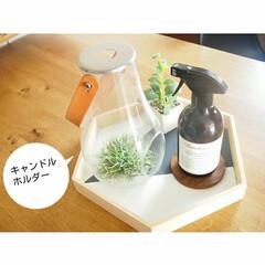Murchison-Hume フードセーフスプレー | フジイ(台所用洗剤)を使ったクチコミ「お気に入りのキャンドルホルダーと、お掃除…」