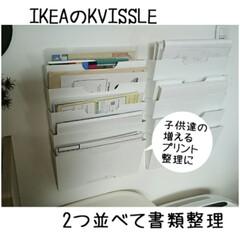 ナカバヤシ どっさり個別Dリングファイル A4サイズ 4穴 背幅60mm グレー RF1035-GY(マガジンラック)を使ったクチコミ「IKEAの新聞ラックを2つ並べてダイニン…」