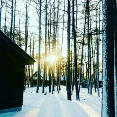 雪中キャンプ/大自然/DOD/焚き火/寒い/アウトドア/... 人生初のキャンプは真冬の極寒の地でした。…