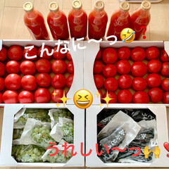 感謝/トマトジュース/トマト/ぶどう 今日、農園で働いてる実家の母から届きまし…