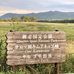秋/湖/お出かけ/サンゴ草/サロマ湖/花/... 昨日は、日本で3番目に大きなサロマ湖を散…(3枚目)