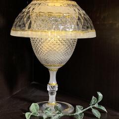 LIMIAでアイデア投稿/ランプ/LEDキャンドル/プラスチックボウル/プラスチックワイングラス/LIMIAインテリア部/... 透明プラスチックのワイングラス、ボウルに…