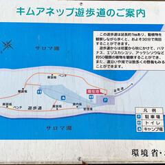 秋/湖/お出かけ/サンゴ草/サロマ湖/花/... 昨日は、日本で3番目に大きなサロマ湖を散…(4枚目)