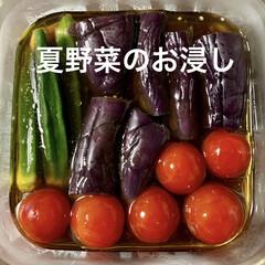 お吸い物のもと/塩肉じゃが/夏野菜のお浸し/おうちごはん/簡単/時短レシピ/... 🍚昨日の晩ご飯🍚  ●夏野菜のお浸し ミ…