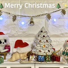 プレゼントボックス/クリスマスツリー/雪/フレンチブルドッグ/雪だるま/お気に入り/... ✨🎄Merry Christmas🎄✨ …