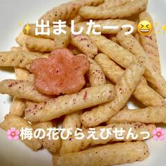 梅の花/スナック菓子/えびせん/ピンク 大好きな「紀州の梅味」えびせんっ🦐 小皿…