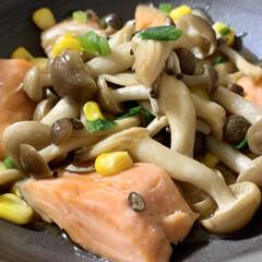 秋/秋鮭/レンチンレシピ/おうちごはん/簡単/時短レシピ 🍚昨日の晩ご飯🍚  ●レンチン♪鮭ときの…