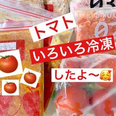 トマト長期保存/時短レシピ/山本ゆりさんレシピ/丸ごと冷凍トマト/カットトマト/ミートソース/... 母から届いた大量のトマト✨🍅✨ とても食…