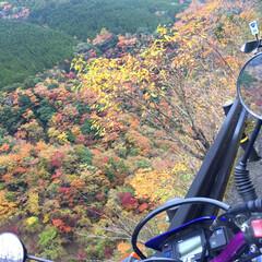 ツーリング/バイク/紅葉/秋/風景/おでかけ/... 奈良 天川村 大峰山辺り ツーリング 吉…
