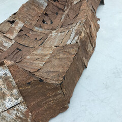 外出自粛/美術館/ミュージアム/アート/芸術/旅行 自然界の変化 サビサビのトタンを組み合わ…