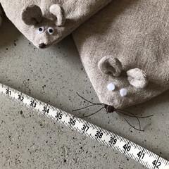 趣味/裁縫/ポットマット/ねずみ/手作り/DIY/... チクチク 針と糸で気の向くままに製作中^…(1枚目)