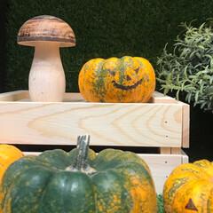 季節の行事/おでかけワンショット/かぼちゃ/9月/ハロウィン/イケア/... あと少しで10月 IKEAで見かけたハロ…(3枚目)