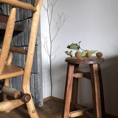 木/空間/素材/スツール/ベンチ/暮らし/... 部屋のとあるコーナースペース  木の素材…
