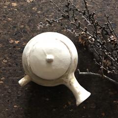 キッチン道具/フォルム/お茶時間/急須/陶器/キッチン雑貨/... ぷっくら丸く、ちょこっと口の白化粧が施さ…