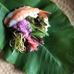 石の上にも三年/美味しい/朴葉/朴葉寿司/郷土料理/季節/... 朴葉寿司 この季節ならではの田舎のお楽し…(2枚目)