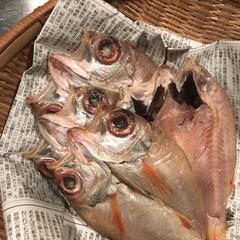 """お魚/旅行/夕食/一夜干し/のどぐろ/近江市場/... 旅行先の近江市場で購入した""""のどぐろの一…"""