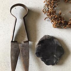 ガラクタ/古い物/アンティーク/化石/ハサミ/旅の思い出/... 最近お気に入りの雑貨?変な物たちご紹介 …