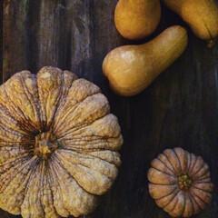 四季/行事/2018/フード/日常のふとしたこと 冬至に食べるかぼちゃ   2018年は…